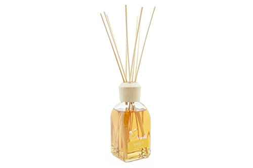 Ambientair Vanilla Scented Essential Oil Rattan Reed Diffuser 100ml