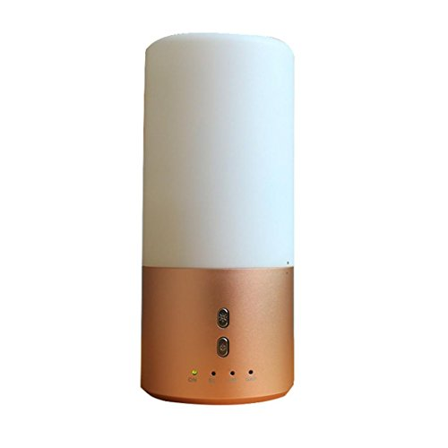 Transer LED Ultrasonic Aroma Humidifier Essential Oil Diffuser Aromatherapy Purifier Gold